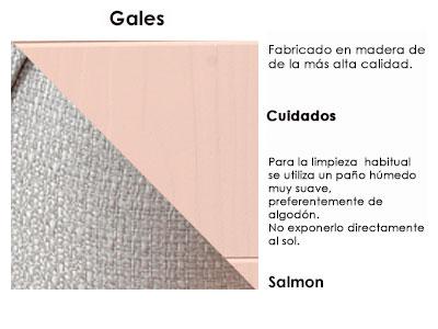gales1_salmon