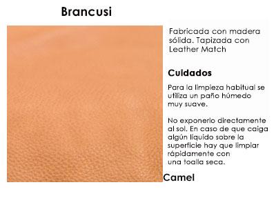 brancusi_camel