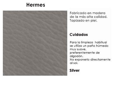 hermes1_silver